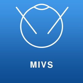 MIVS-ServicesPage